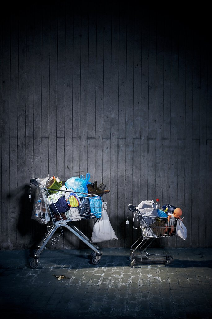 Einkaufswägen