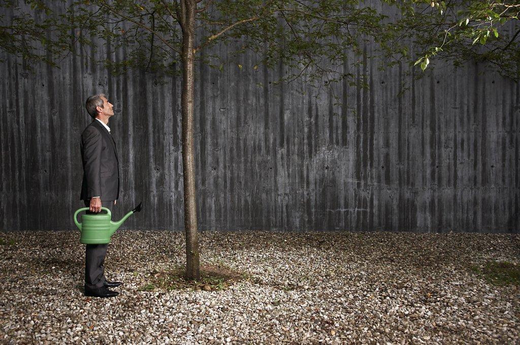 Mann gießt Baum
