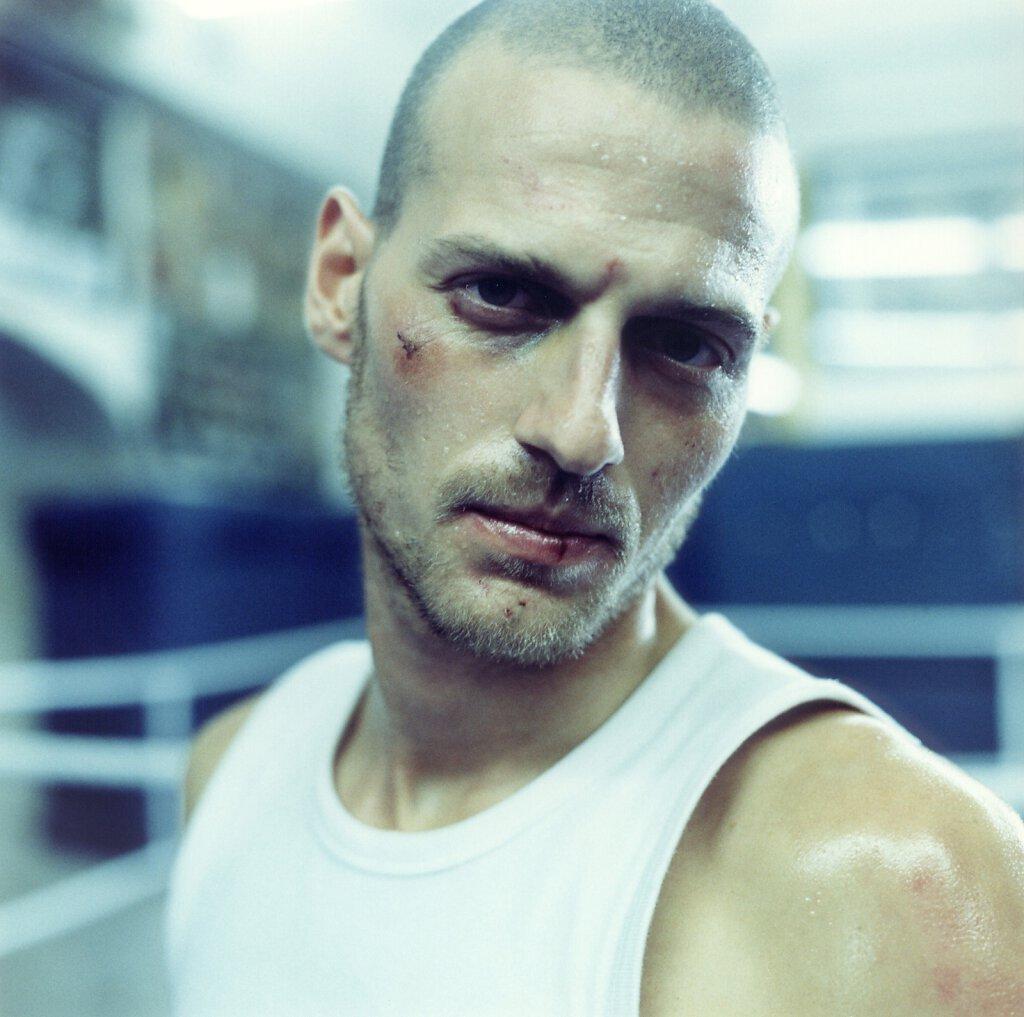 Portrait Boxer